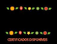 Certificados Dia do Nutri MT
